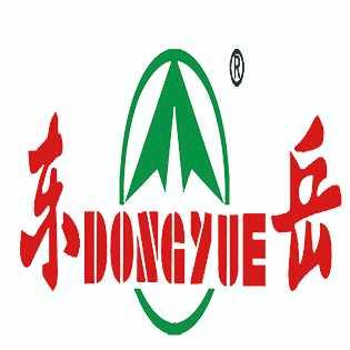 新东岳集团