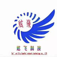 山东炫飞网络科技有限公司